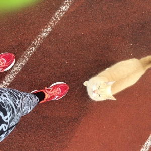 Track Cat of Track Cat Fitness